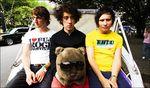 WOMBATS & Teddy bear