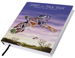 Spirit Of Talk Talk, le livre